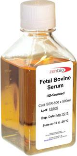 Bovine Serum